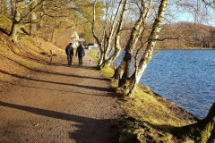 talkin-tarn-woodland-walk